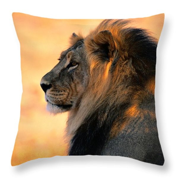 An Adult Male African Lion, Panthera Throw Pillow by Nicole Duplaix