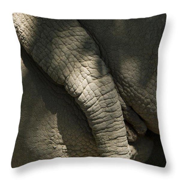 An African Elephants Rear End Throw Pillow by Joel Sartore