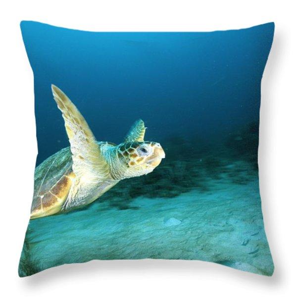 An Endangered Loggerhead Turtle Throw Pillow by Brian J. Skerry
