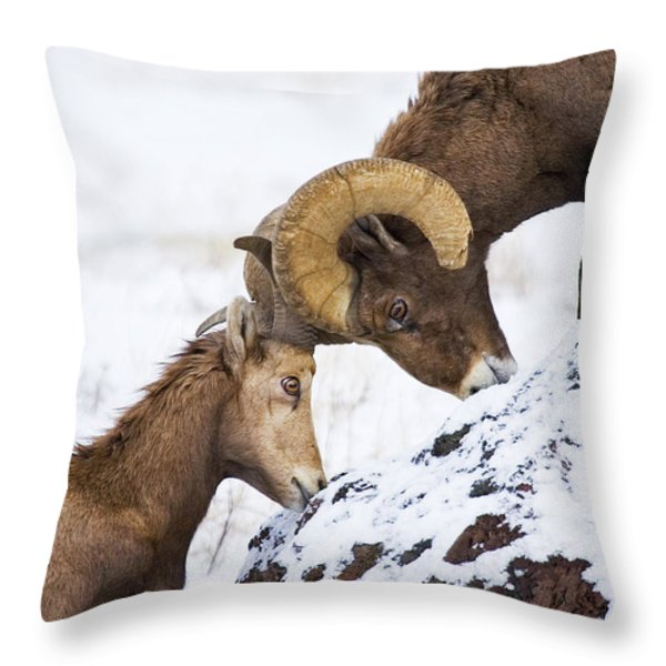 An Uphill Battle Throw Pillow by Mike  Dawson
