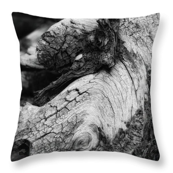 Ancient Knight's Stead Throw Pillow by Donna Blackhall