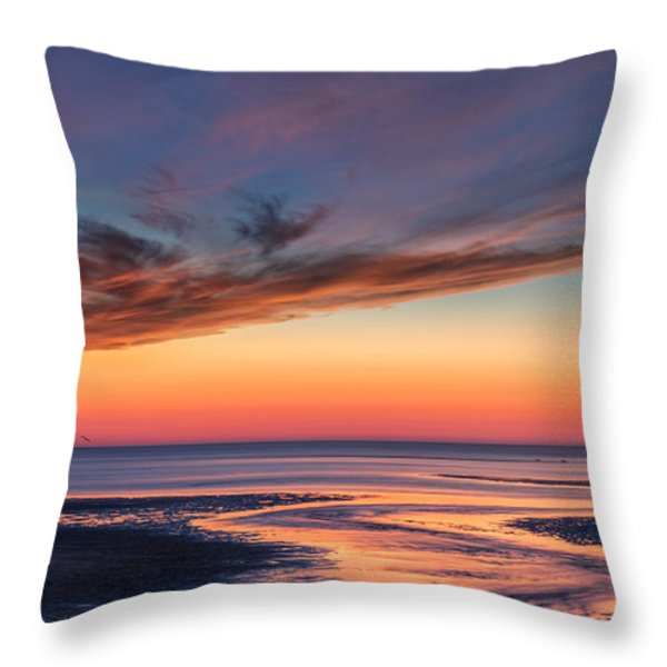 Another Day Throw Pillow by Bill Wakeley