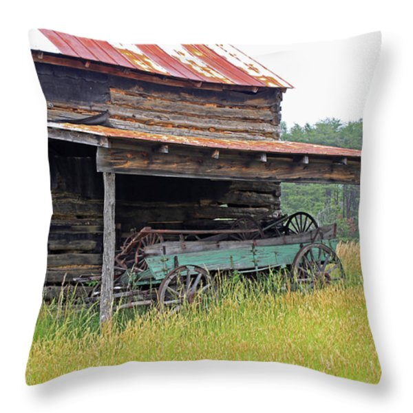 Another Time III Throw Pillow by Suzanne Gaff