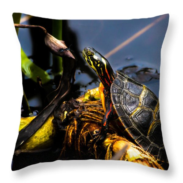 Ant Meets Turtle Throw Pillow by Bob Orsillo