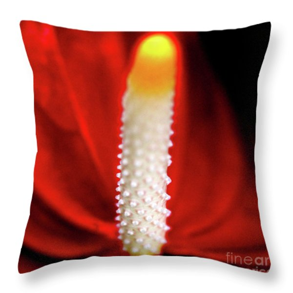 Anthurium Red Flamingo Flower . Square . 7d5567 Throw Pillow by Wingsdomain Art and Photography