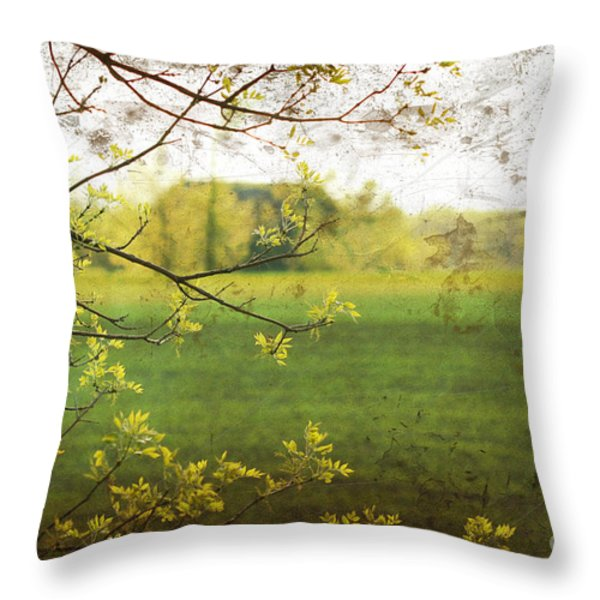 Antiqued grunge landscape Throw Pillow by Sandra Cunningham
