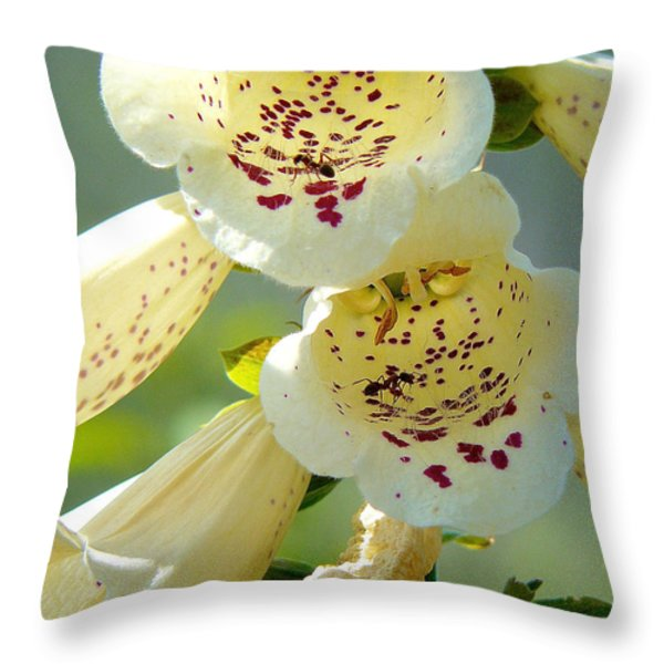 Ants Gone Spotty Throw Pillow by Lisa Knechtel