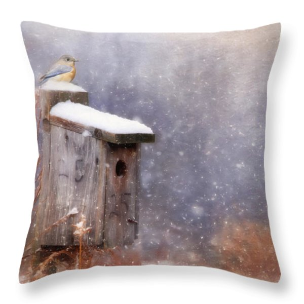 Apartment 25 Throw Pillow by Lori Deiter