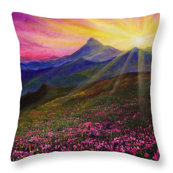 April Sunset Throw Pillow by C Steele