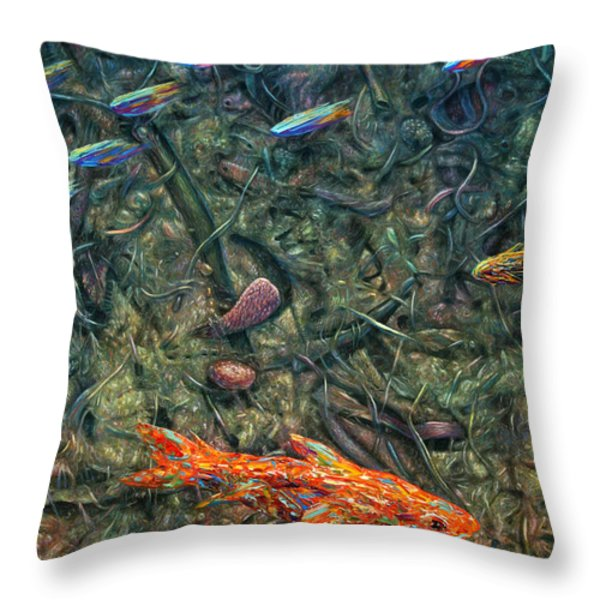 Aquarium 2 Throw Pillow by James W Johnson