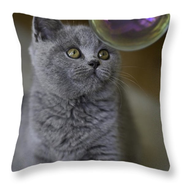 Archie With Bubble Throw Pillow by Sheila Smart