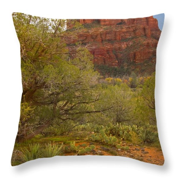 Arizona Outback 3 Throw Pillow by Mike McGlothlen
