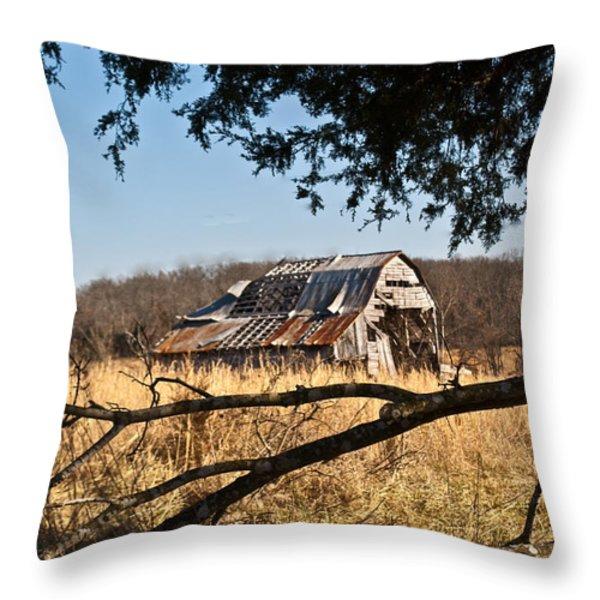 Arkansas Barn 1 Throw Pillow by Douglas Barnett
