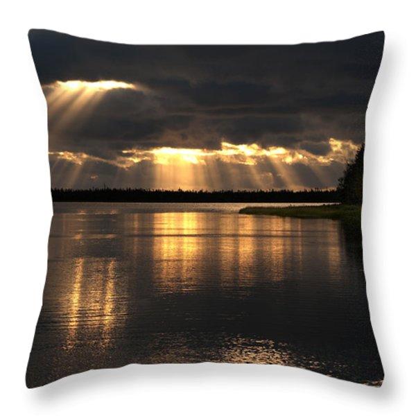 Array of Light Throw Pillow by Elisabeth Van Eyken