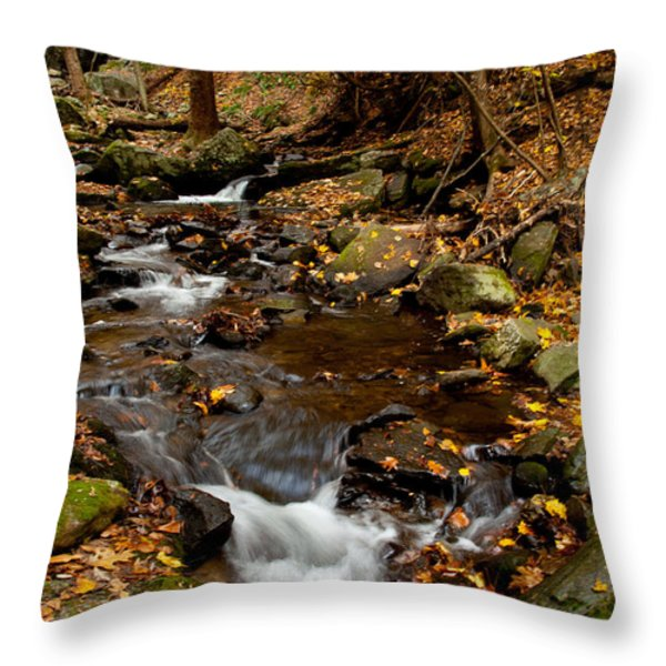 As The Water Runs Throw Pillow by Karol  Livote