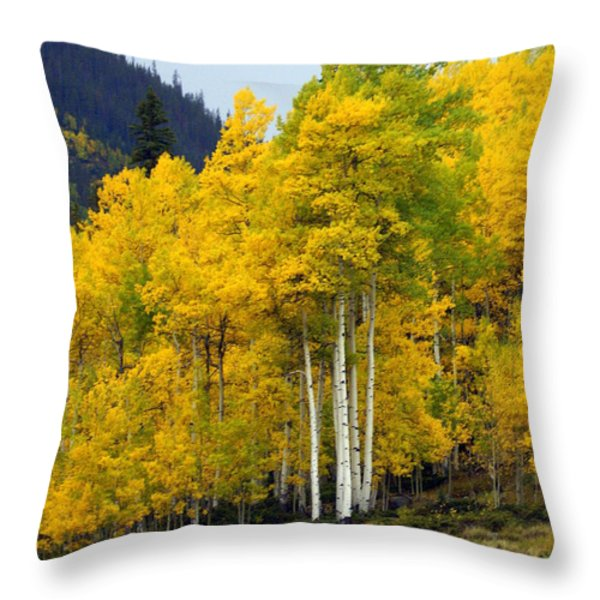 Aspen Fall 3 Throw Pillow by Marty Koch