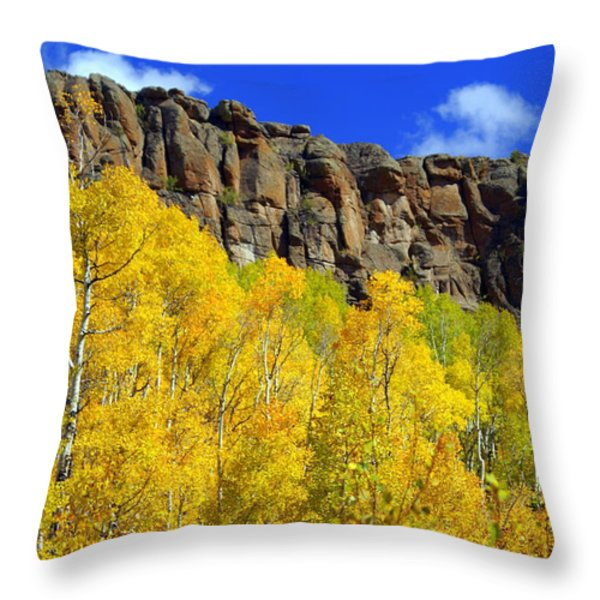 Aspen Glory Throw Pillow by Marty Koch