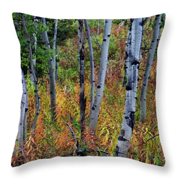 Aspen In Fall Throw Pillow by Marty Koch