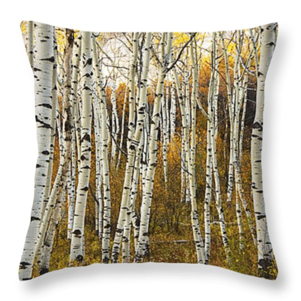 Aspen Tree Grove Throw Pillow by Ron Dahlquist - Printscapes