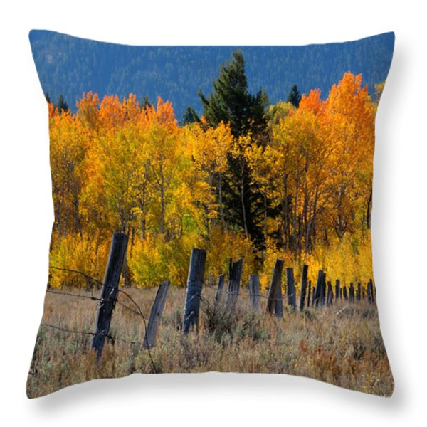 Aspens And Fence Throw Pillow by Idaho Scenic Images Linda Lantzy