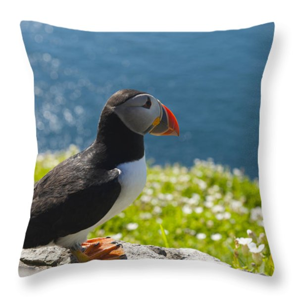 Atlantic Puffins, Fratercula Arctica Throw Pillow by Keenpress