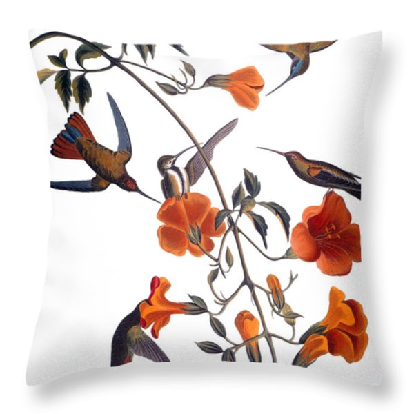 Audubon: Hummingbird Throw Pillow by Granger