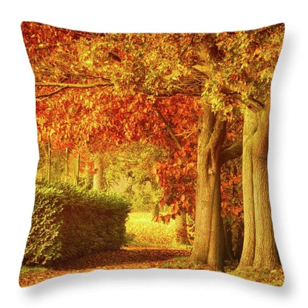 Autumn Colors Throw Pillow by Wim Lanclus
