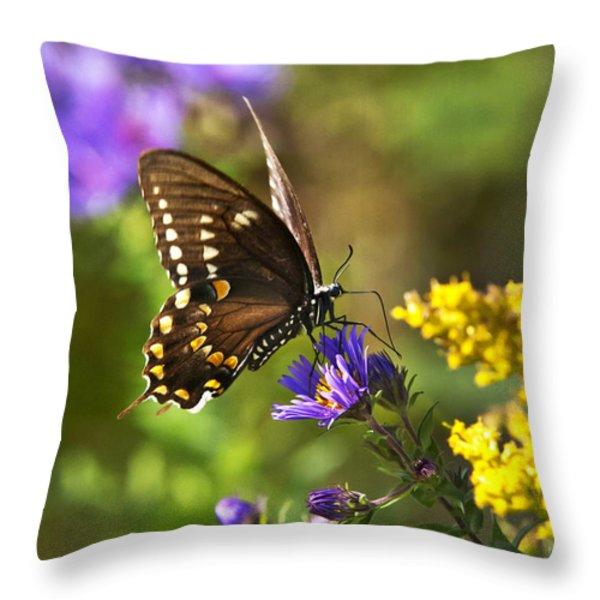 Autumn Garden Butterfly Throw Pillow by Christina Rollo