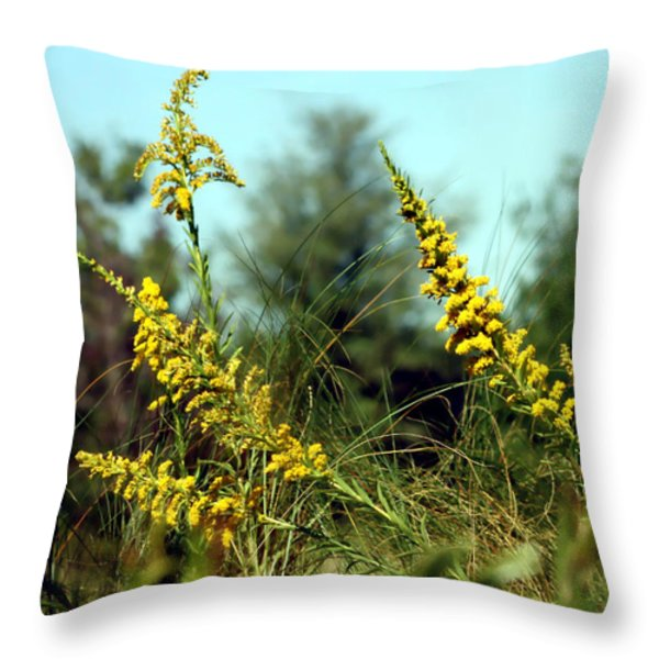 Autumn In The Wind Throw Pillow by Debra Forand