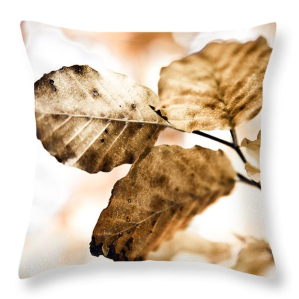 Autumn Leaves Throw Pillow by Frank Tschakert