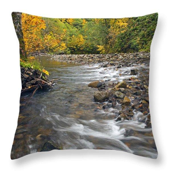 Autumn Meander Throw Pillow by Mike  Dawson
