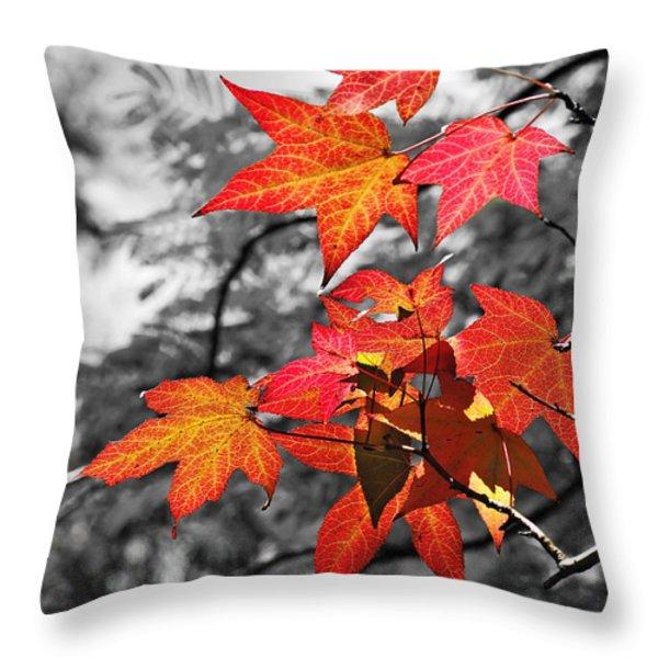 Autumn On Black And White Throw Pillow by Kaye Menner