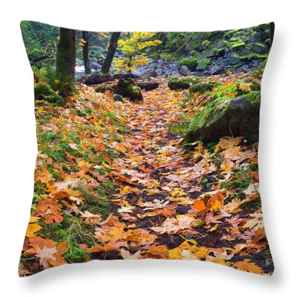 Autumn Path Throw Pillow by Mike  Dawson