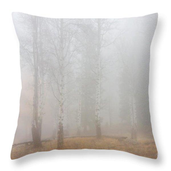 Autumn Reveals Throw Pillow by Mike  Dawson