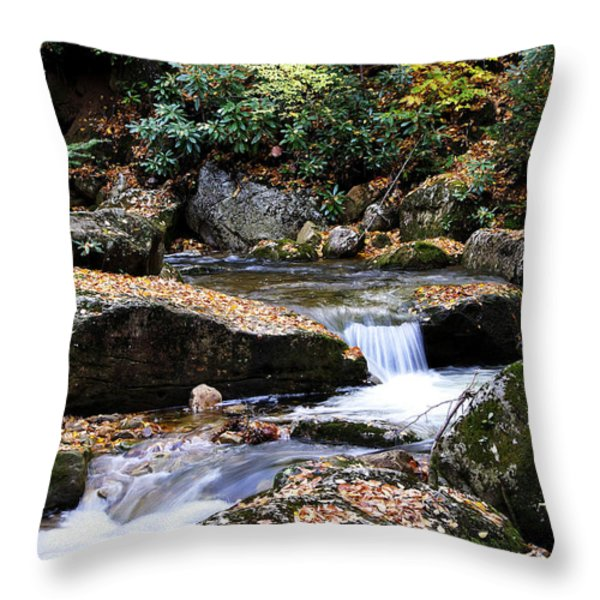 Autumn Rushing Mountain Stream Throw Pillow by Thomas R Fletcher