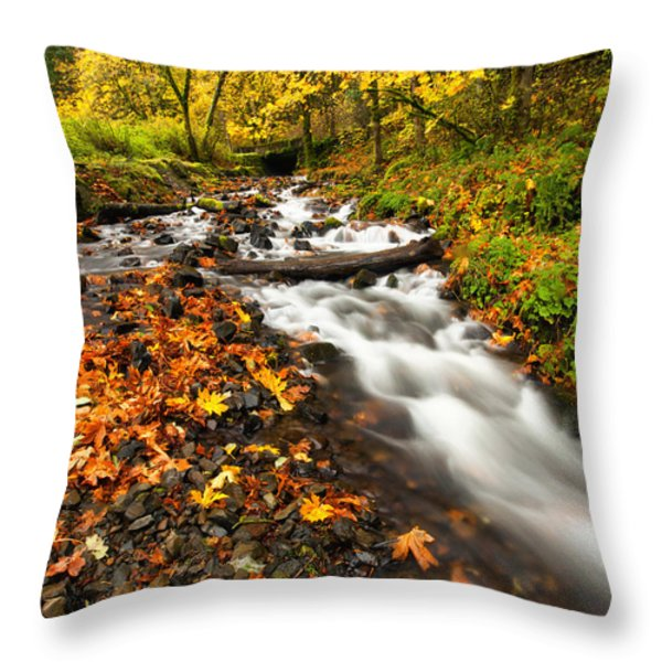 Autumn Split Throw Pillow by Mike  Dawson