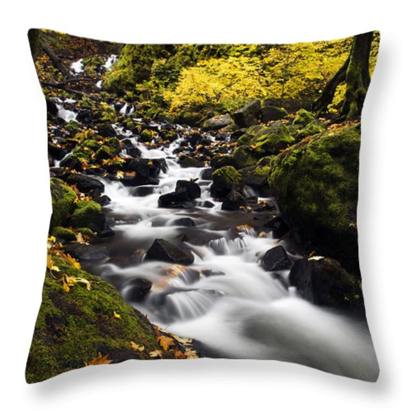 Autumn Swirl Throw Pillow by Mike  Dawson