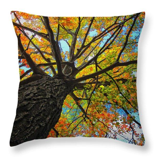 Autumn Tree Throw Pillow by Peg Runyan