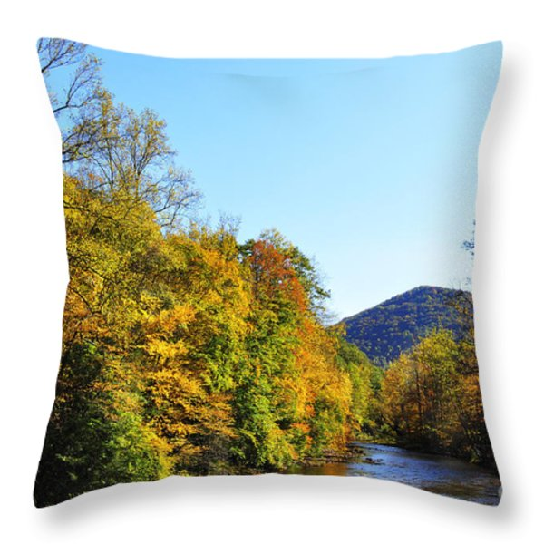 Autumn Williams River Throw Pillow by Thomas R Fletcher