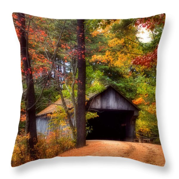 Autumn Wonder Throw Pillow by Joann Vitali