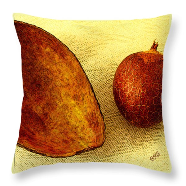 Avocado Seed And Skin II Throw Pillow by Ben and Raisa Gertsberg