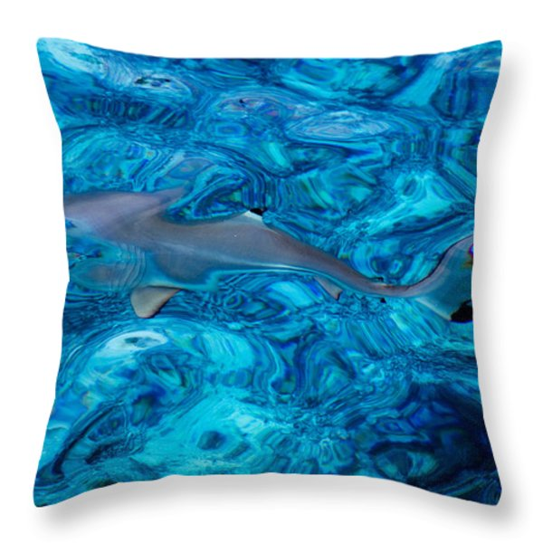 Baby Shark In The Turquoise Water. Production By Nature Throw Pillow by Jenny Rainbow