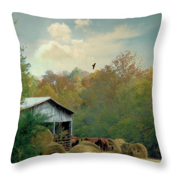 Back At The Barn Again Throw Pillow by Jan Amiss Photography