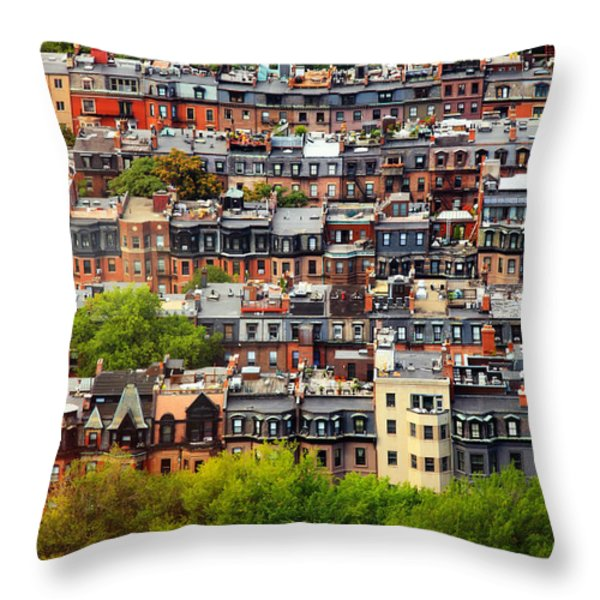 Back Bay Throw Pillow by Rick Berk