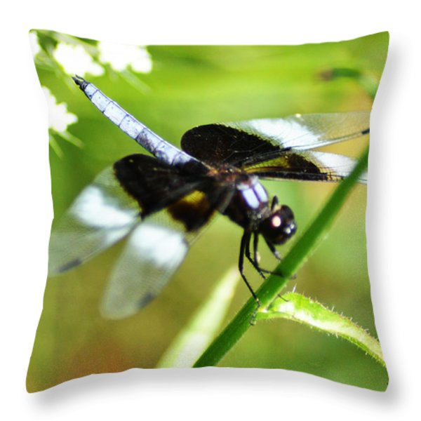 Back In Black - Black Dragonfly Throw Pillow by Bill Cannon