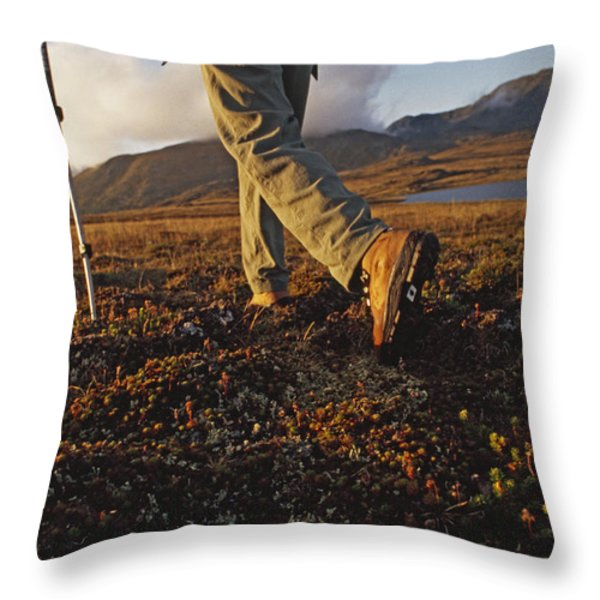 Backpacker Hikes Across Tundra In Logan Throw Pillow by Gordon Wiltsie