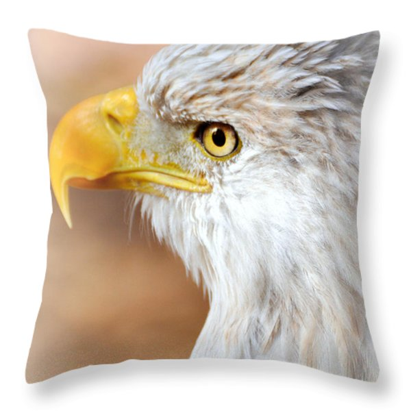 Bald Eagle 15 Throw Pillow by Marty Koch