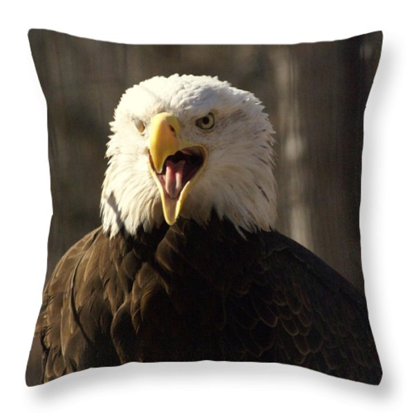 Bald Eagle 4 Throw Pillow by Marty Koch