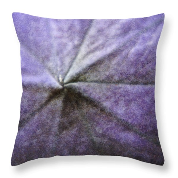 Balloon Flower Throw Pillow by Teresa Mucha