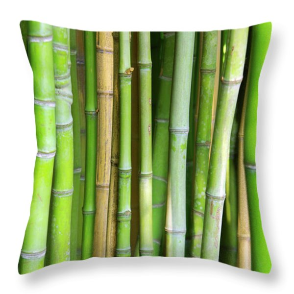 Bamboo Background Throw Pillow by Carlos Caetano